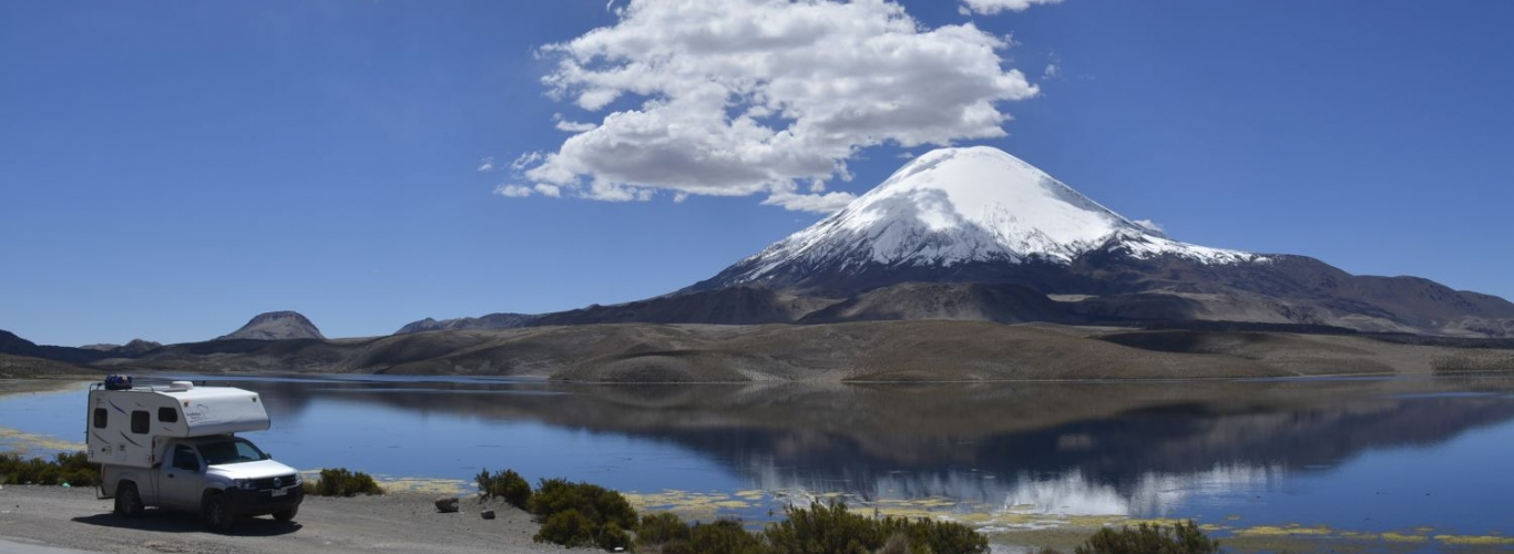Parque Lauca (Chile) Condor Travels